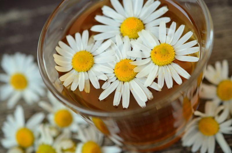 Naturopatia: la medicina secondo natura
