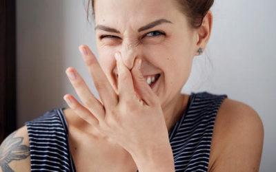 Odore della pelle: non solo igiene ma anche alimentazione