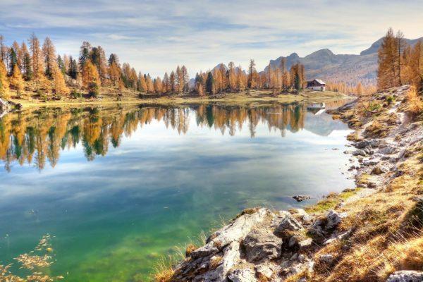 10 buoni motivi per rivolgersi al naturopata
